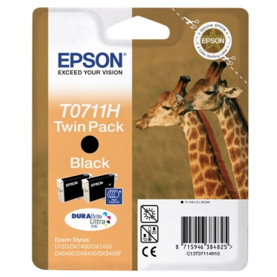 EPSON ink čer Stylus D120 - high capacity double pack