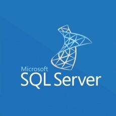 SQLSvrEntCore 2019 SNGL OLP 2Lic NL CoreLic Qlfd