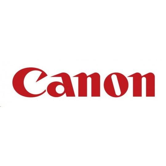Canon Dye Ink Tank PFI-320 Yellow  300ml